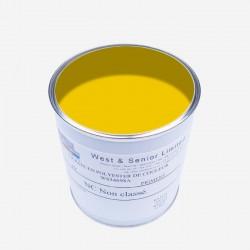 Pigmento per resine GIALLO 50 gr