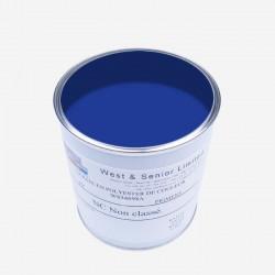 Pigmento per resine BLU 50 gr