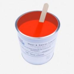 Pigmento per resine Arancione Fluo 50 gr